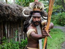 Dani Dugum warrior. Royalty Free Stock Photo