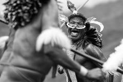 Dani tribesmen at the annual Baliem Valley Festival. stock photo