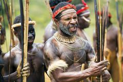 Dani tribesmen at the annual Baliem Valley Festival. royalty free stock image