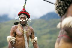 Dani tribesmen at the annual Baliem Valley Festival. royalty free stock photo