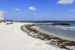 Άνθρωποι που απολαμβάνουν την παραλία Dania Στοκ εικόνα με δικαίωμα ελεύθερης χρήσης