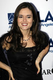Danica McKellar on the red carpet. Stock Image