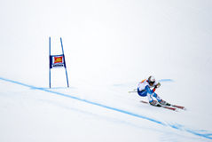 Daniel Albrecht - Fis World Cup Royalty Free Stock Photography