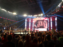 Daniel Bryan entra nell'arena per la partita mentre la folla impazze con 'Y Immagini Stock