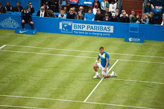 Daniel Evan at Queens Club Royalty Free Stock Photos
