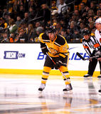 Daniel Paille Boston Bruins Royalty Free Stock Photo