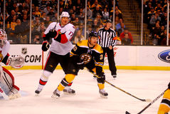 Daniel Paille Boston Bruins Stock Images