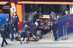 Daniel Ricciardo in doos - Toro Rosso Royalty-vrije Stock Foto