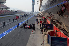 Daniel Ricciardo op kuil-Lijn, Toro Rosso Royalty-vrije Stock Fotografie