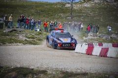 Daniel Sordo Hyundai Motorsport Royaltyfria Foton