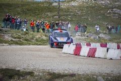 Daniel Sordo Hyundai Motorsport Royaltyfri Foto