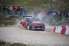 Daniel Sordo, Hyundai Motorsport Fotografia Royalty Free