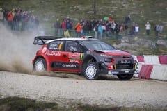 Daniel Sordo, Hyundai Motorsport Zdjęcia Royalty Free