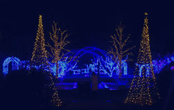 Daniel Stowe Botanical - Christmas 5. Daniel Stowe Botanical Garden in Belmont NC decorated with Christmas lights at night royalty free stock photo