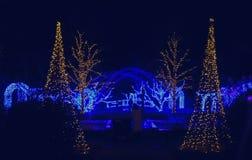 Daniel Stowe Botanical - Kerstmis 5 Royalty-vrije Stock Foto