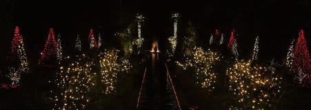 Daniel Stowe Botanical - Natale 4 Immagine Stock Libera da Diritti