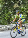 Daniele Bennati on Col du Tourmalet - Tour de France 2014 Royalty Free Stock Images