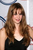 Danielle Panabaker Royalty Free Stock Photo