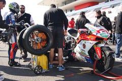 Danilo Petrucci Ducati 1198R Barni Superstock Stock Image