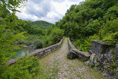 Danilo's Bridge Over Mrtvica river, Montenegro Royalty Free Stock Images