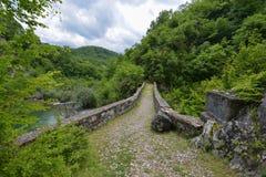 Danilo's Bridge Over Mrtvica river, Montenegro Royalty Free Stock Images