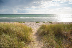 Danish beach landscape Royalty Free Stock Image