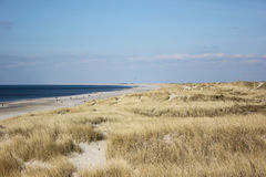 Danish beach. A view of a danish beach at summer Royalty Free Stock Image