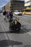 Danish bikers Royalty Free Stock Images