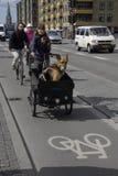 Danish bikers Stock Photo