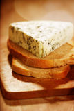 Danish blue cheese Royalty Free Stock Photos