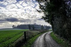 Danish Countryside with amazing detail royalty free stock photo