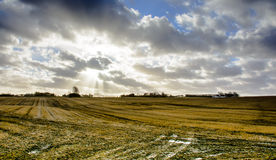 Danish countryside Royalty Free Stock Photography