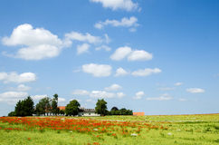 Danish countryside view Royalty Free Stock Photos