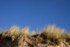Danish dunes sky blue stock images