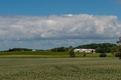 Danish farm and fields. On the countryside Royalty Free Stock Photos