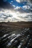Danish field Stock Photo