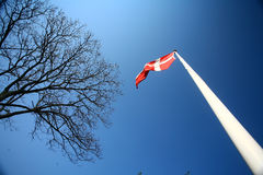 Danish flag Stock Images