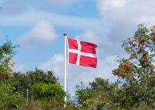 Danish flag above trees. Danish flag waving in the wind on sjaelland Royalty Free Stock Photo