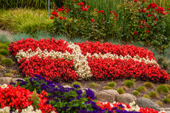 Danish flag made out of flowers. Flower garden with red and white flowers illustrating the danish flag Royalty Free Stock Photos