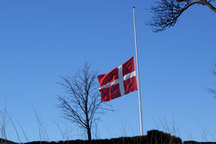 Danish flag swaying on half Stock Images