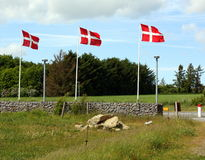Danish flags Royalty Free Stock Photo