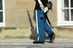 Danish guard with bayonet. And shadow royalty free stock photography