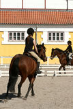 Danish horse farm Royalty Free Stock Images