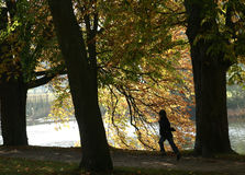 Danish landscape. Autumn in the countryside in denmark, girl running royalty free stock photo