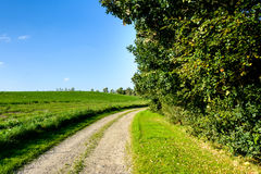 Danish landscape - with a small dirt road Stock Images