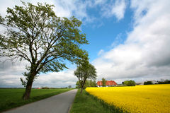 Danish landscape01 Royalty Free Stock Photos