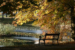 Danish landscape01. Autumn in the countryside in denmark, bench lake and tree stock photo