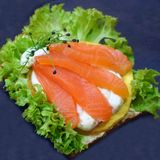 Salmon sandwich with lettuce and spread Stock Photos