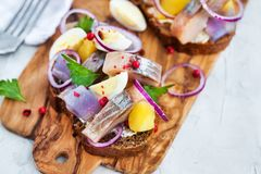 Open sandwich smorrebrod with herring, onion, potato and eggs. Danish open sandwich smorrebrod with herring, onion, potato and eggs Stock Image