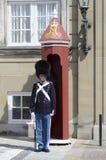 Danish Queen guard Stock Images